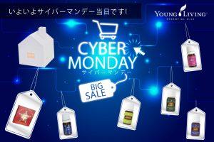 promo_cybermonday6